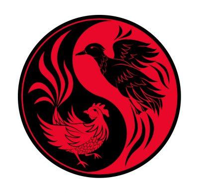Chicken Same Duck Talk logo